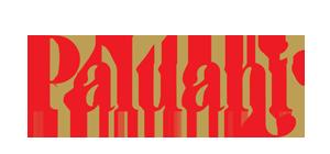 sponsor logos paluani